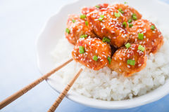 Korzenny cukierki i podśmietanie kurczak z sezamem i ryż zamkniętymi up na błękitnym tle Obraz Stock