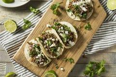 Korzenny Domowej roboty wołowiny Barbacoa Tacos obraz royalty free