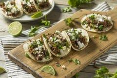 Korzenny Domowej roboty wołowiny Barbacoa Tacos Zdjęcia Royalty Free