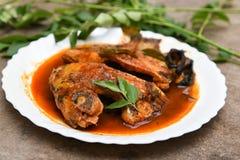 Korzenny gorący rybi curry od Kerala India Obrazy Stock