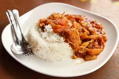 Korzenny kurczaka curry, ryż i Fotografia Stock
