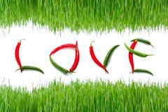 Korzenny miłość znak Zdjęcie Stock