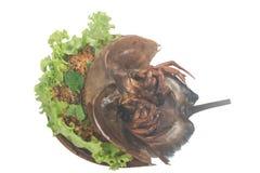 Korzenny sałatkowy podkowa kraba jajko Obrazy Royalty Free