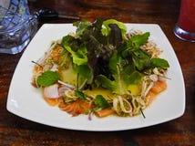 Korzenny Tajlandzki karmowy łosoś z sałatką fotografia royalty free