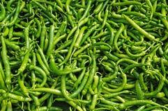 Korzenny zielony pieprz Fotografia Stock