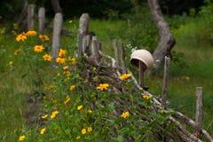 Korzystny ceramiczny glinianego garnka obwieszenie na wierzby ogrodzeniu otaczającym y obrazy royalty free