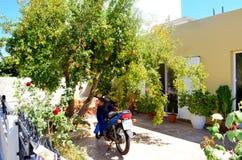 Kos ö, Grekland Typisk grekisk gård av ett hus med det orange trädet och motorcykeln som under parkeras royaltyfri foto