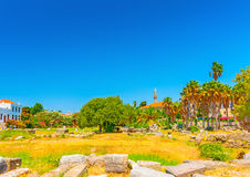 In Kos island in Greece Royalty Free Stock Image