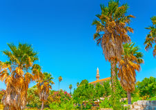 In Kos island in Greece Royalty Free Stock Photos