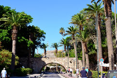 Kos island ,Greece .Typical Greek street  with palm trees Royalty Free Stock Images