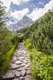 Koscielec (mountain in Tatras) Stock Image