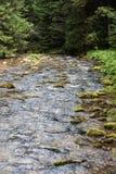 Koscieliska Valley in Tatry Mountains Stock Photos
