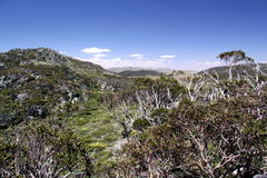 Kosciusko National Park Australia stock images