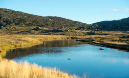 Kosciuszko national park. Summer season in kosciuszko national park, Australia Stock Photography