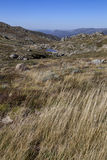Kosciuszko park narodowy Zdjęcia Royalty Free