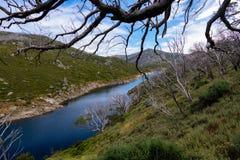 Kosciuszko park narodowy obraz stock