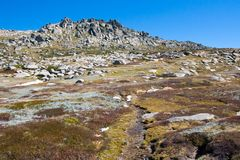 Kosciuszko Walk at Thredo Summit. A spectacular view across the valley on the Kosciuszko walk near the summit of Thredo in Snowy Mountains, New South Wales Royalty Free Stock Images