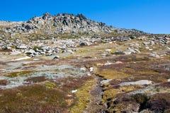 Kosciuszko Walk at Thredo Summit Royalty Free Stock Images