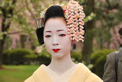 Kosen Maiko close up with sakura in background Stock Images