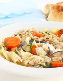 Kosher chicken noodle soup Stock Photos