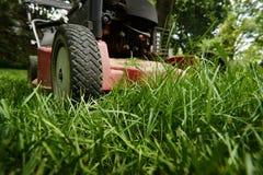 Kosi gazonu niskiego kąt lawnmower tnąca trawa zdjęcie royalty free