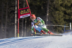 KOSI Klemen. Val Gardena, Italy 20 December 2014. KOSI Klemen (Slo) competing in the Audi FIS Alpine Skiing World Cup Super-G race on the Saslong course in the Royalty Free Stock Photos