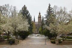 Kosice, Eslováquia - 17 de abril de 2018: Catedral do ` s do St Elizabeth em Kosice Fotos de Stock Royalty Free