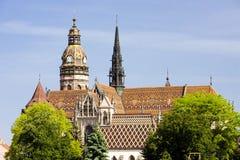 Kosice, Slovakia. Cathedral of Saint Elizabeth, Kosice, Slovakia stock photo