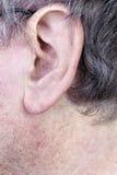 Kosmaty mężczyzna ucho obraz stock