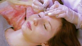 Kosmetiker korrigiert den Augenbrauenkunden mit Pinzette stock footage