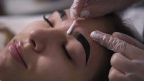 Kosmetiker reibt mit den Augenbrauen einer Wattestäbchenfrau, Art die Form Korrekturaugenbraue Seitenansicht der Nahaufnahme stock video