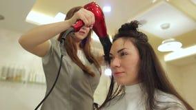 Kosmetikerschlag, der das Haar der Frau trocknet, nachdem ein neuer Haarschnitt am Wohnzimmer gegeben worden ist stock video