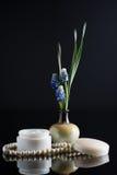 Kosmetische Creme mit Blumenzusammensetzung Stockfotografie