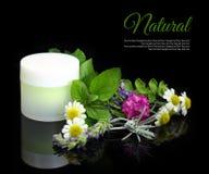 Kosmetische Creme mit Kräutern lizenzfreies stockbild