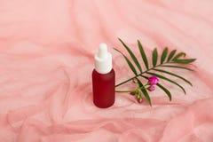 Kosmetische flessen, roze oliekruiken, groen palmblad stock afbeeldingen