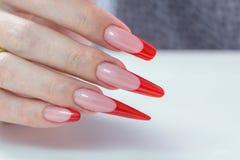 kosmetische Produkte Art Manicure Roter schwarzer Nagellack Steigung der modernen Art Schönheitshände mit stilvollen bunten modis Lizenzfreie Stockbilder