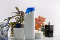 Kosmetische uitrusting Mannelijke zorg stock afbeeldingen