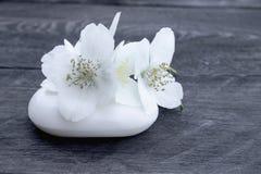 Kosmetisk tvål och vita jasminblommor med gröna sidor ligger på en träbakgrund Det finns ett st?lle f?r din text royaltyfri fotografi