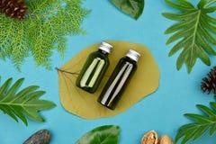 Kosmetiska flaskbehållare på grön växt- sidabakgrund, tom etikett för att brännmärka modellen Royaltyfri Foto