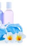 Kosmetiska produkter i flaskor och badlakan Arkivbild