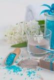 Kosmetiskt lerapulver, hemlagad leratvål och blåtthav som är salta på wh Royaltyfri Foto