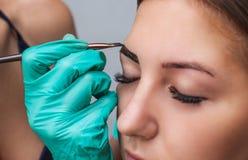 Kosmetolog-Maskenbildner wendet Farbenhennastrauch auf vorher gezupft, Design, getrimmte Augenbrauen in einem Schönheitssalon an stockbilder