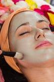 Kosmetologia zdrój twarzowy Zdjęcie Stock