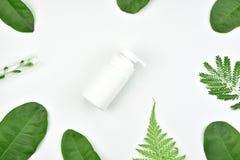 Kosmetyczni butelka zbiorniki z zielonymi ziołowymi liśćmi, Pusta etykietka Obrazy Stock