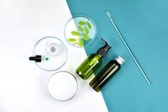Kosmetyczni butelka zbiorniki z zielonymi ziołowymi liśćmi, Pusta etykietka dla oznakować egzamin próbnego, Naturalny piękno prod Obraz Royalty Free