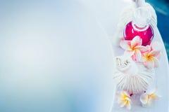 Kosmetyczni produkty, frangipani kwiaty, ziołowy, i masaż stemplują na wannie z błękitne wody Zdrój lub wellness tło obrazy stock