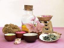 Kosmetyczni traktowania set Fotografia Stock