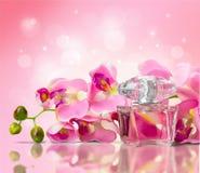 Kosmetyki, makijaż, pachnidło Zdjęcie Royalty Free
