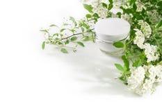 kosmetyki naturalni Obraz Stock