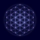 Kosmische Blume des Lebens mit Sternen Lizenzfreies Stockfoto